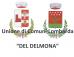 """UNIONE DI COMUNI LOMBARDA """"UNIONE DEL DELMONA"""""""