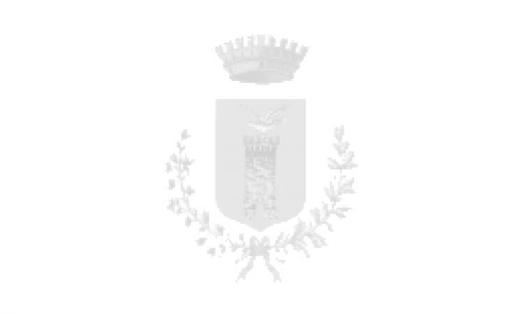TRASPORTI ECCEZIONALI - LIMITAZIONI AL TRANSITO STRADE COMUNALI